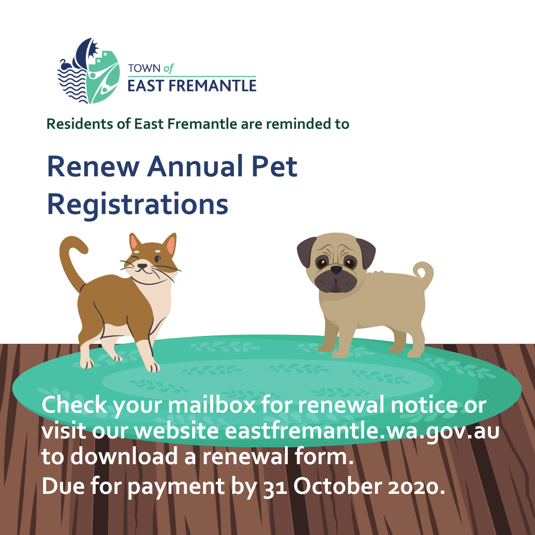 Time to Renew Registrations for your Pets